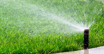 Irrigation Install & Repair Service